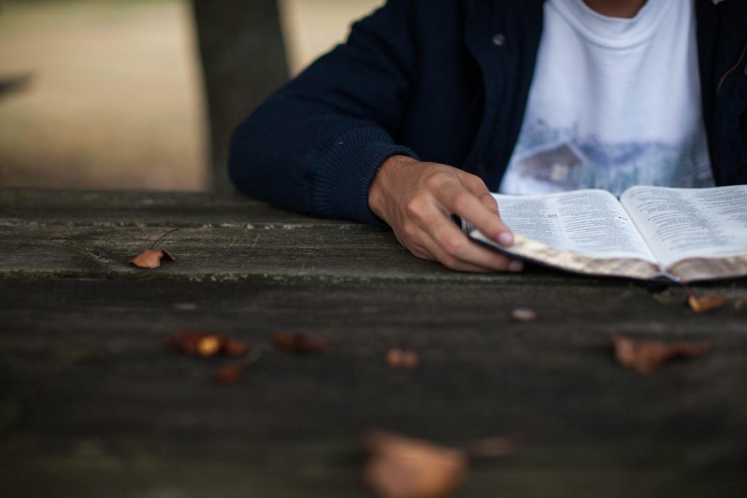 O conhecimento e a busca pela evolução na paternidade - Papo de Pai