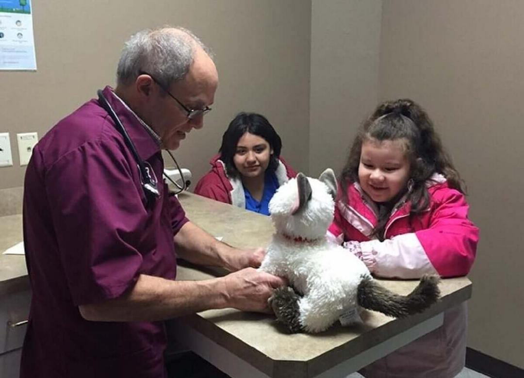 Veterinário atende gato de pelúcia doente de menina autista - Papo de Pai