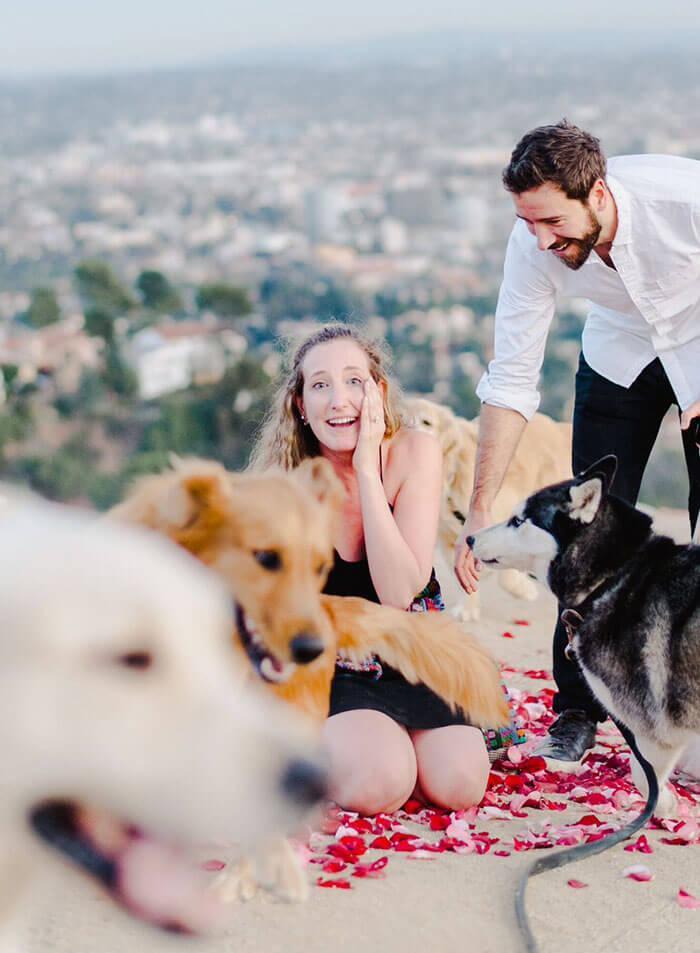 Ele pediu a namorada em casamento com 16 cachorros e a reação dela é impagável - Papo de Pai