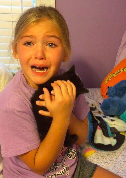 Menina explode em lágrimas ao ganhar gatinho que parece seu melhor amigo que morreu - Papo de Pai