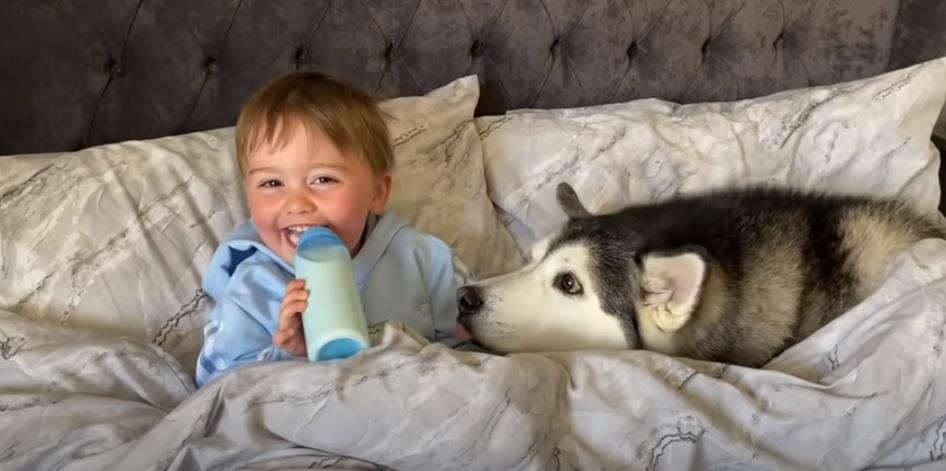Pai flagra filho tirando cochilo com seu cachorro e vídeo viraliza! - Papo de Pai